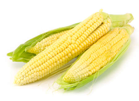 Corn on the cob on white  background Stock Photo