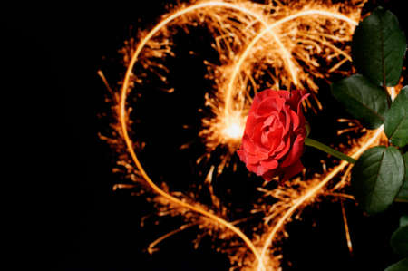 Red rose and sparkling heart Stock Photo - 3852881