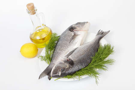 fish head: Two raw sea breams with dill on white plate, lemon and olive oil isolated on white background Stock Photo