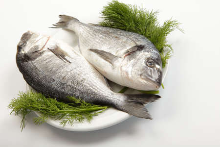 dorado fish: Two raw gilt-head breams with dill on white plate Stock Photo
