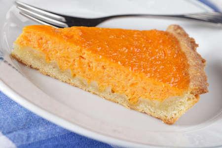 Slice of pumpkin pie on white plate closeup Stock Photo - 8227081
