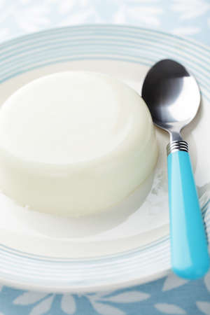 Blancmange on the plate closeup Stock Photo - 9214861