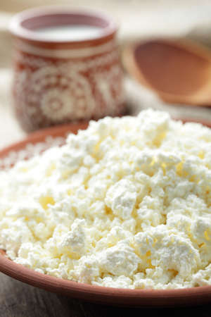 Homemade cottage cheese in the rustic plate