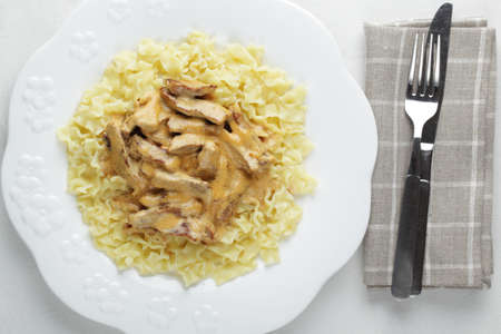 Beef Stroganoff with pasta on the plate. Top view Stock Photo - 9648038