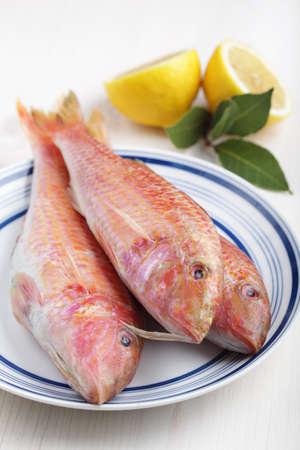 goatfish: Three raw goatfishes on the plate before cooking