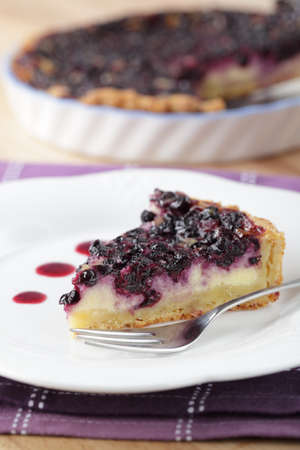 Slice of blueberry pie on the plate closeup Stock Photo - 9831235