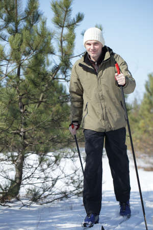 crosscountry: Cross-country skiing in the winter pine forest Stock Photo