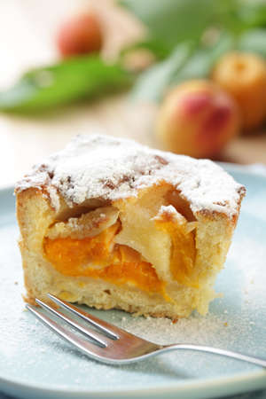 Slice of pie with apricot and powdered sugar closeup