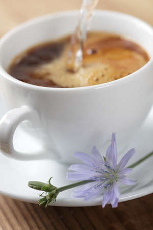 chicory coffee: Chicory hot drink and a flower