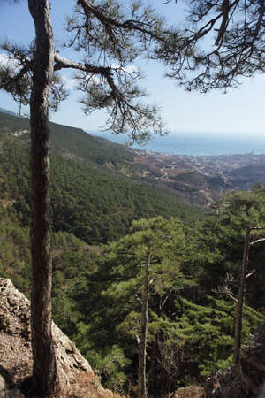 crimean: View to Yalta from Crimean mountains