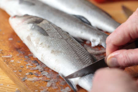 Cook cleaning a sea bass on a wooden cutting board photo