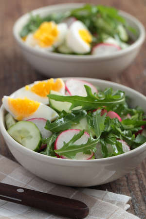 Fresh salad with radish, cucumber, rocket, and boiled egg photo