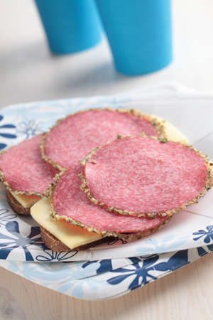 Sandwiches with salami and cheese on a paper plate photo