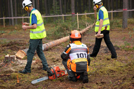 tree felling: Raubichi, Minsk region, Belarus - August 25, 2012: Japanese Akita Mitsugi finishs tree felling during World Logging Championship in Raubichi, Minsk region, Belarus at August 25, 2012 Editorial