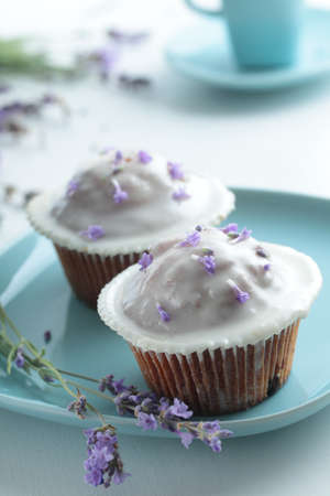 Cupcakes with lavender frosting on a plate Stock Photo - 15229342