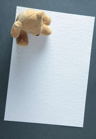 imprinted: Frame with imprinted paper and Teddy Bear