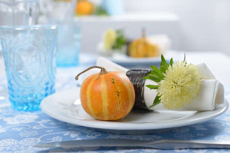 Thanksgiving table setting with decorative pumpkins Stock Photo - 15554843