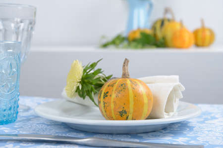 Thanksgiving table setting with decorative pumpkins Stock Photo - 15687987