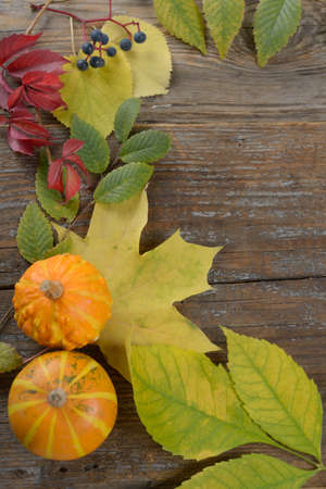 Thanksgiving background with pumpkins and autumn leaves photo