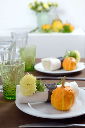 Thanksgiving table setting with decorative pumpkins Stock Photo - 16133616