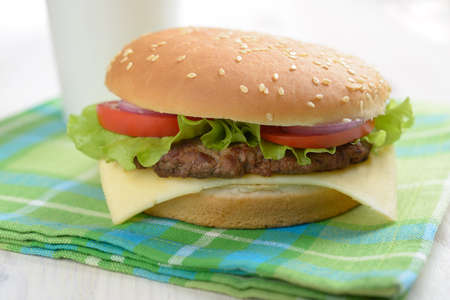 Homemade hamburger on a napkin photo