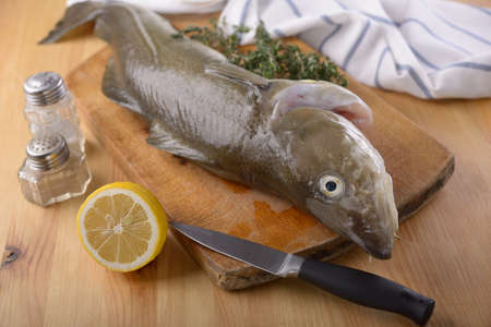 Raw cod on a cutting board photo
