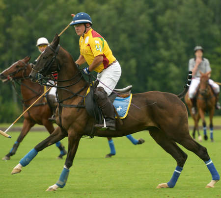 Moscow, Russia - July 27, 2013  Alexey Rodzyanko  in front  in the match between teams of Moscow Polo Club and Tseleevo Golf   Polo Club during 8th Russian Open Polo Championship in Tseleevo, Moscow, Russia on July 27, 2013