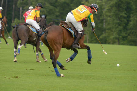 Moscow, Russia - July 27, 2013 Mikhail Rodzyanko center in the match between teams of Moscow Polo Club and Tseleevo Golf Polo Club during 8th Russian Open Polo Championship in Tseleevo, Moscow, Russia on July 27, 2013 Redakční