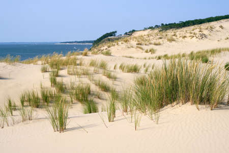 aquitaine: Dune of Pilat, France is the tallest sand dune in Europe Stock Photo
