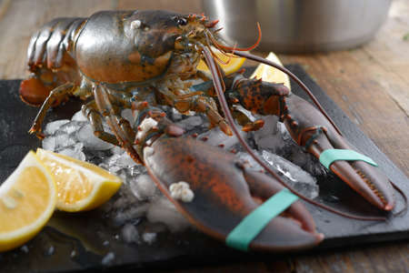 clawed: Clawed lobster on a table before cooking. Focus on eyes