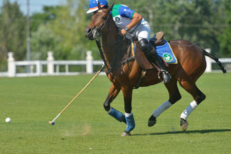 Tseleevo, Moscow region, Russia - July 26, 2014  Misha Rodzianko of Moscow Polo Club in action in the match against British Schools during the British Polo Day  Moscow Polo Club won 7-6 Editorial