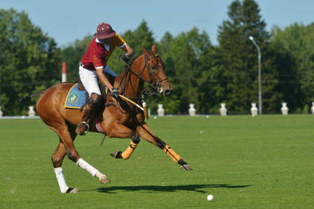Tseleevo, Moscow region, Russia - July 26, 2014  Francisco Ramos of Tseleevo Polo club in action during the match against the Oxbridge polo team during the British Polo Day  Oxbridge won 5-4