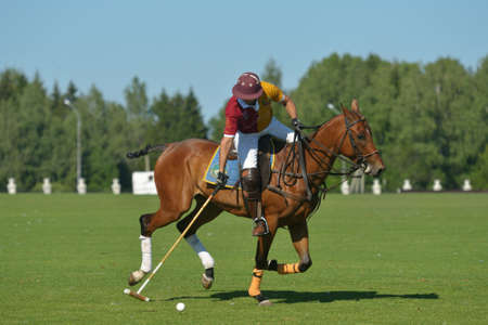 Tseleevo, Moscow region, Russia - July 26, 2014  Francisco Ramos of Tseleevo Polo club in action during the match against the Oxbridge polo team during the British Polo Day  Oxbridge won 5-4 Editorial