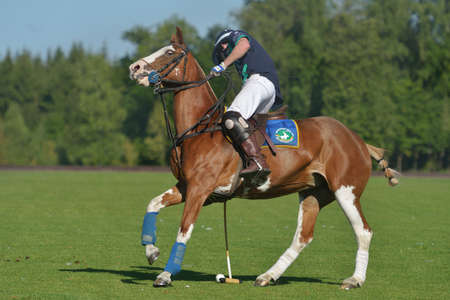 Tseleevo, Moscow region, Russia - July 26, 2014  Sam Browne of Oxbridge Polo Team in action during the match against the Tseleevo Polo Club during the British Polo Day  Oxbridge won 5-4 Editorial