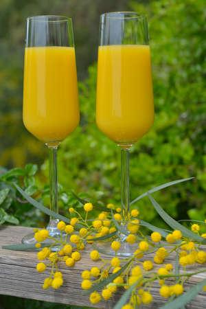 пышной листвой: Два бокала мимозы коктейль на открытом воздухе против пышной листвой Фото со стока