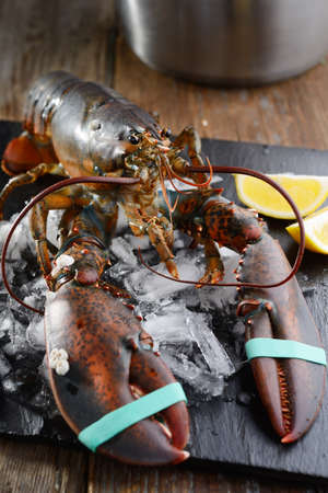 clawed: Raw clawed lobster on a table before cooking