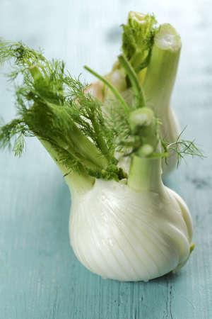 foeniculum vulgare: Fresh bulb of fennel closeup on a rustic table