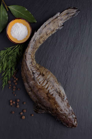 burbot: Raw burbot fish with spices on a slate cutting board