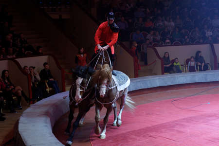 vaulting: St. Petersburg, Russia - February 3, 2017: Vaulting on horseback during dress rehearsal of the circus program CircUS 2.0. The program created in the Great Moscow Circus and reflects the vision of circus art of XXI century Editorial