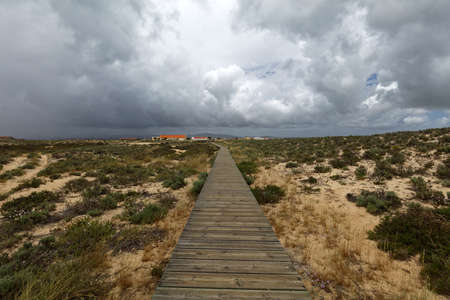 formosa: Pathway to the beach on Culatra Island in Ria Formosa Natural Park, Portugal Stock Photo