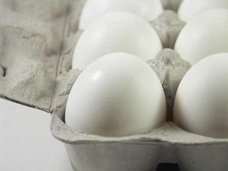 carton of a dozen eggs with focus on front left corner of carton Stock Photo - 259456