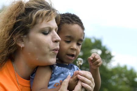 Attractive Caucasian woman with an multi-racial toddler playing with a dandelion photo