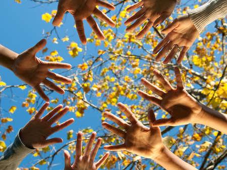manos juntas: Cuatro adolescentes de diferentes nacionalidades, alcanzando uno hacia el otro manos al aire libre en la ca�da