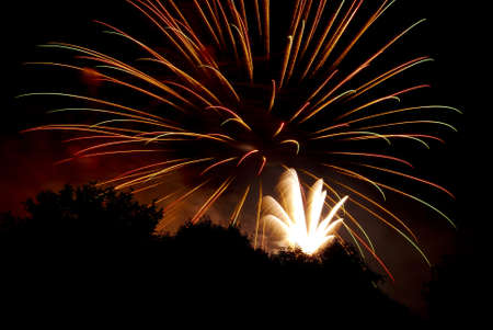 Fireworks against a black sky with trees silhouetted. Stock Photo - 7087256