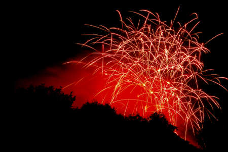 Fireworks against a black sky with trees silhouetted. Stock Photo - 7087258