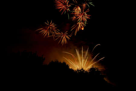 Fireworks on a black sky against tress silhouetted. Stock Photo - 7087269
