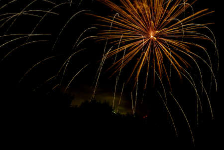 Fireworks against a black sky. Stock Photo - 7169643