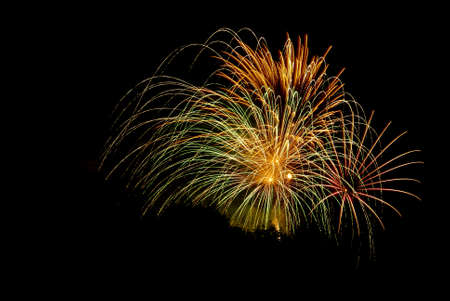 Fireworks against a black sky with trees silhouetted. Stock Photo - 7169651