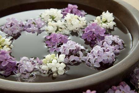 花は水を入れたボウルに浮かんでいます。浅い自由度。 写真素材