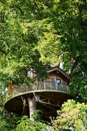 A huge treehouse up in the tree tops